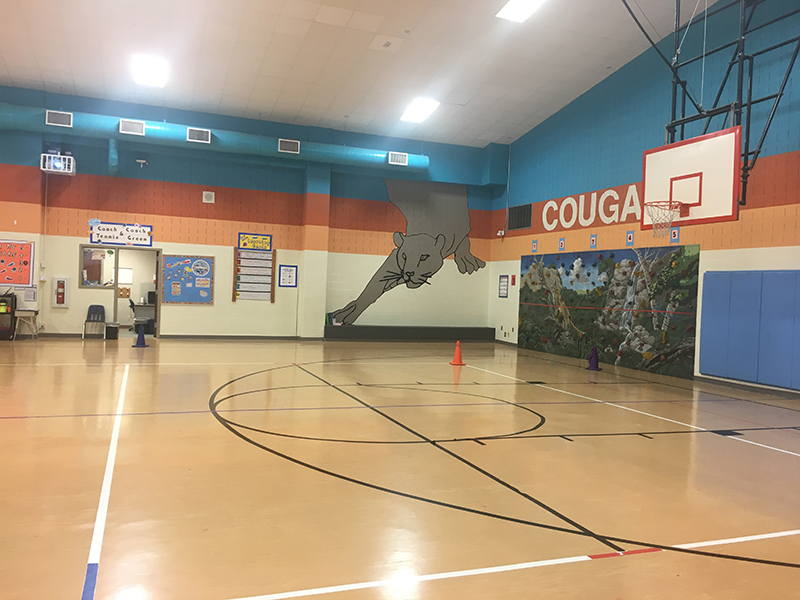 gym floor and wall